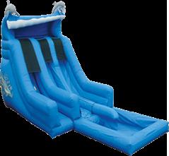 dual_lane_dolphin_water_slide